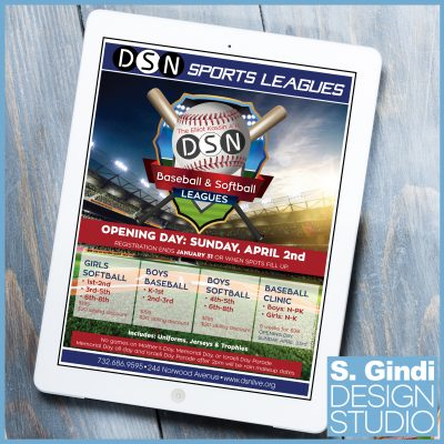Posters Designed for DSN's Sports Leagues